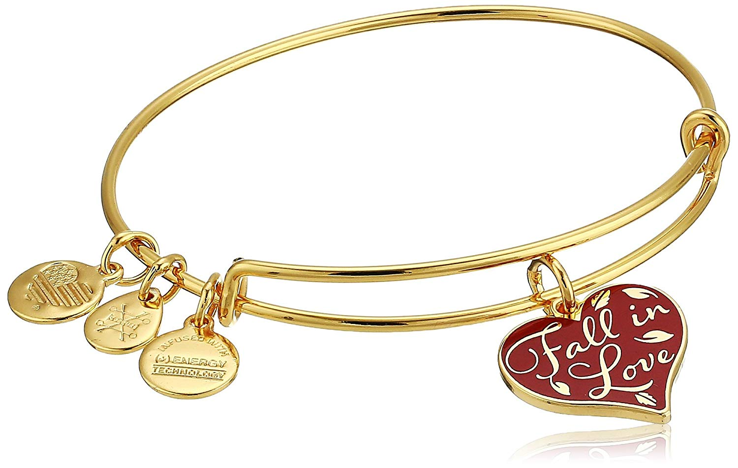 Alex and Ani Color Infusion Fall In Love Bangle - A18EBFILSG