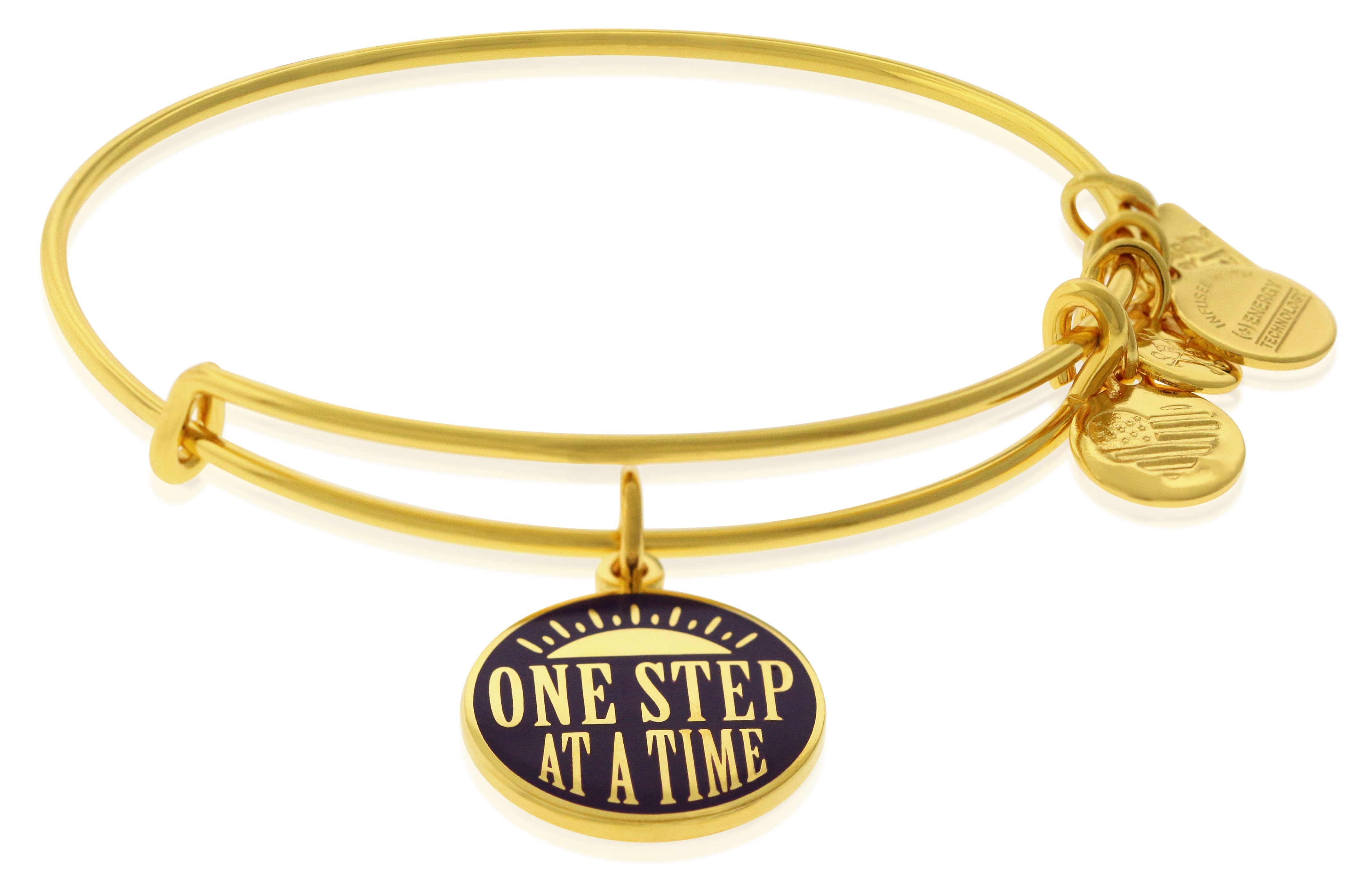Alex And Ani Charity By Design - One Step Bangle - CBD18OSSG